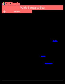 Wide sargasso sea english pdf