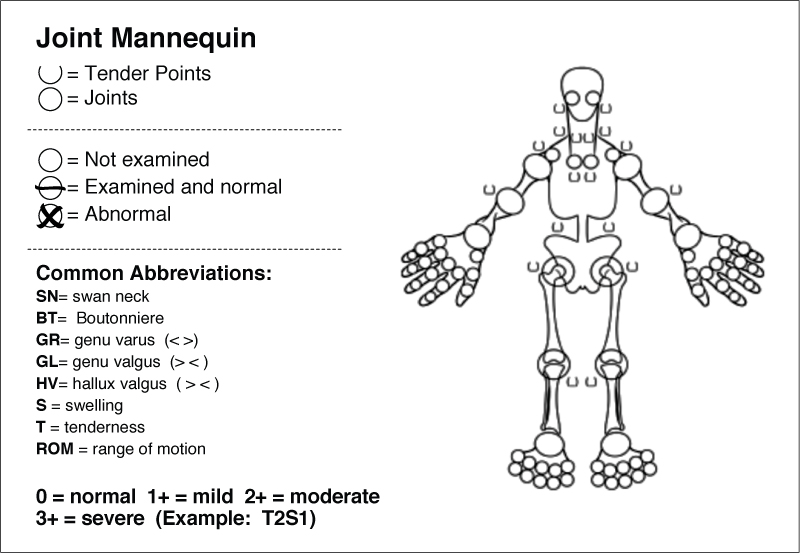 Musculoskeletal system assessment documentation