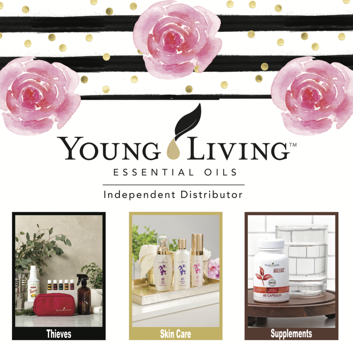 Young living product guide 2017 usa