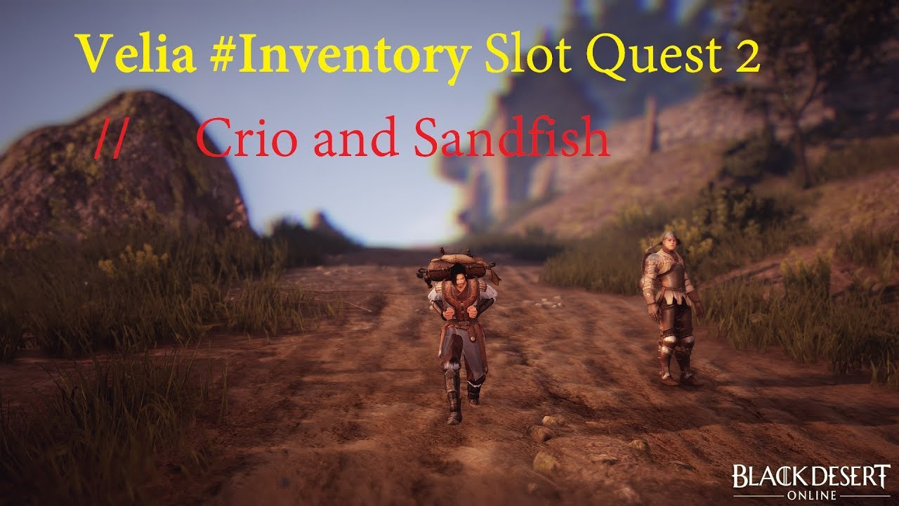 Bdo how to get inventory slots