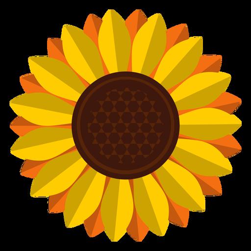 Half of a yellow sun download pdf
