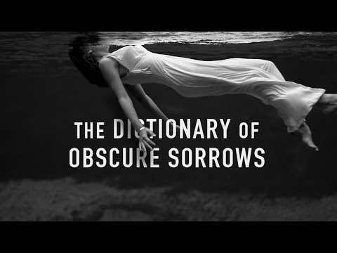 John koenig dictionary of obscure sorrows