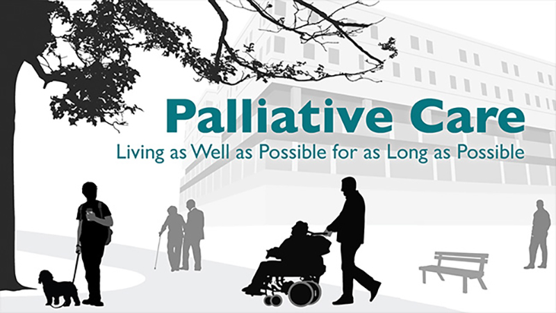 palliative and supportive care instructions for authors