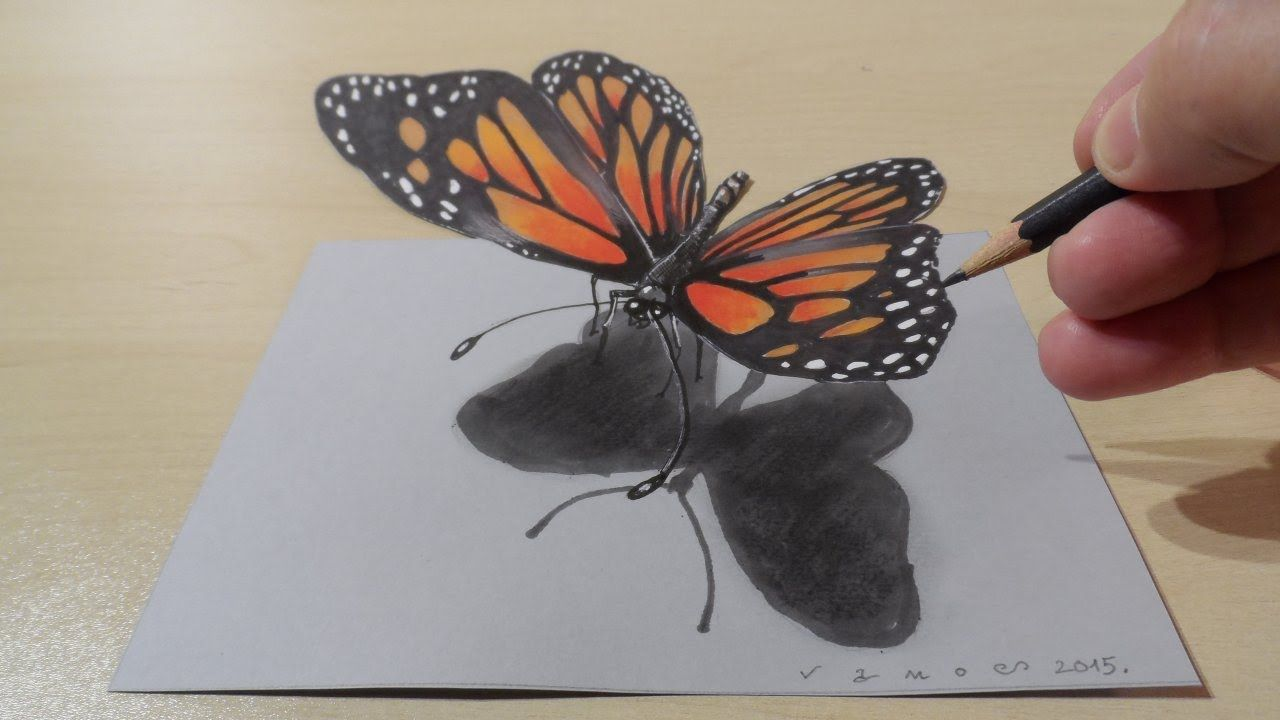 Steps on how to draw a realistic butterfly