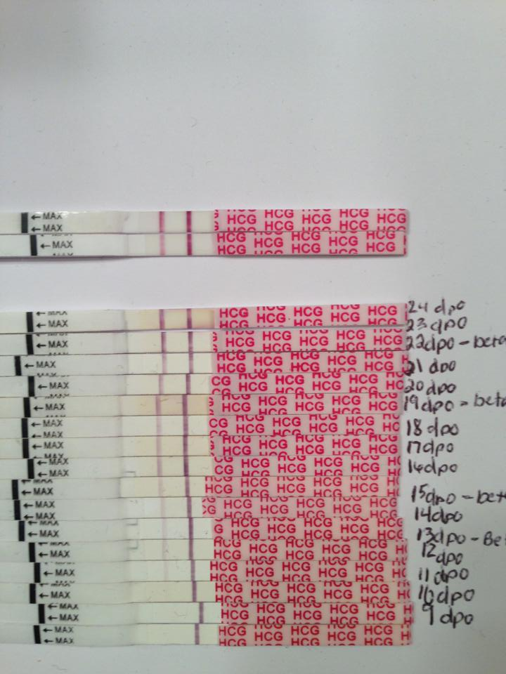 wondfo pregnancy test strips instructions